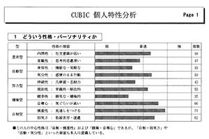 CUBIC 分析結果サンプル